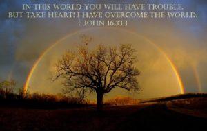 meme of John 16:33